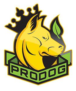 Pro Dog Raw